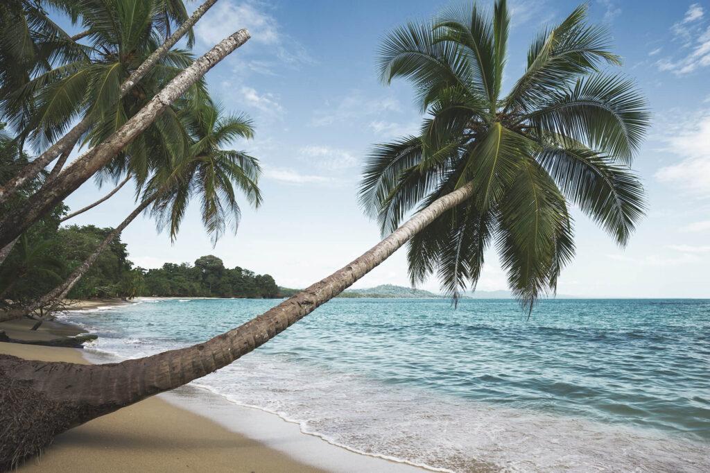 Punta Uva Costa Rica