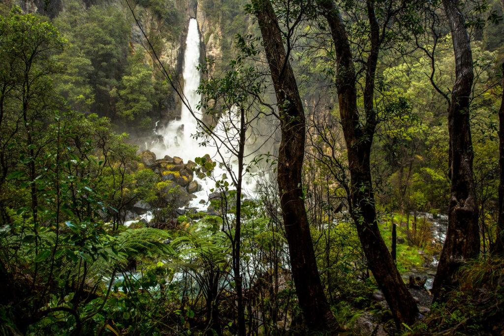 Tarawera Falls, Rotoiti Forest, New Zealand