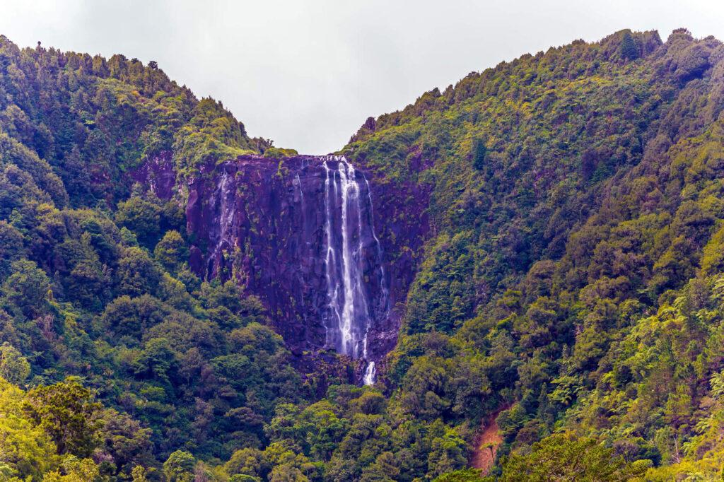 Wairere Falls, North Island, NZ